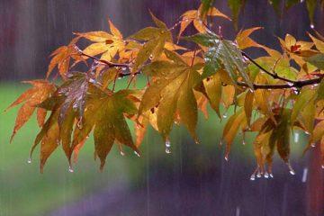 ورود دو سامانه سرد بارشی به گلستان/ کاهش ۱۰ درجه ای دما
